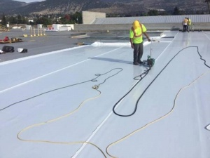 TPO project (courtesy Carlisle Syntec).jpg